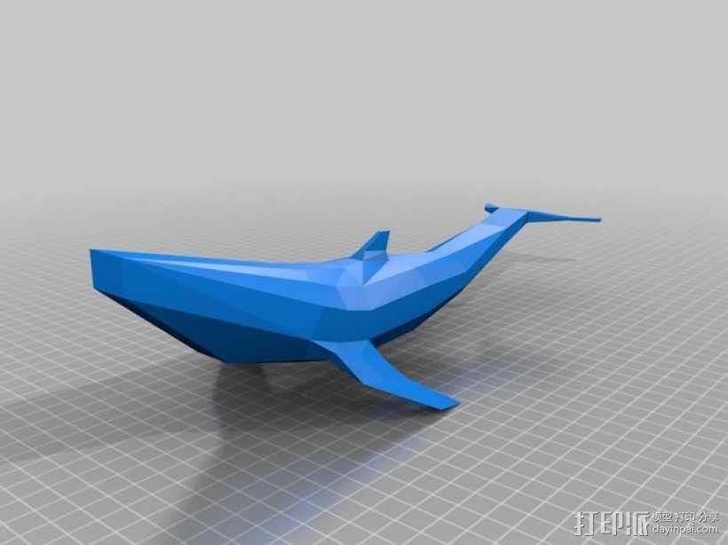 低面数鲸鱼 3D模型  图3