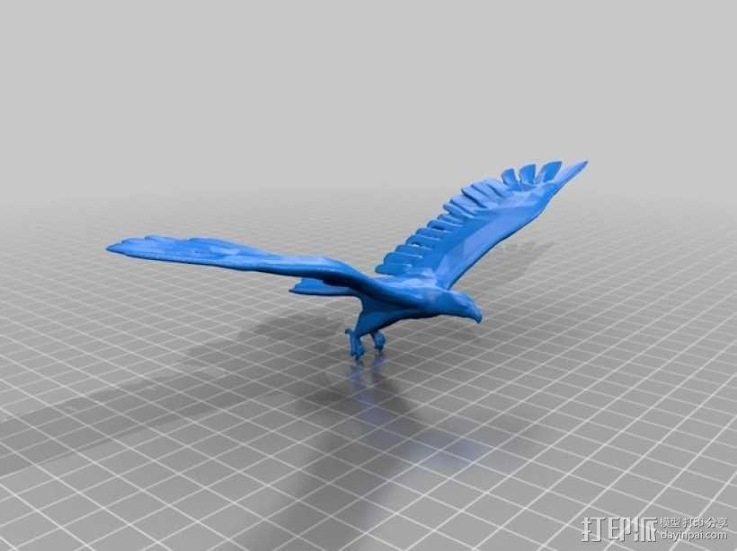 老鹰 3D模型  图1