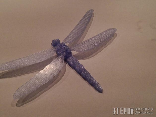 蜻蜓 3D模型  图7