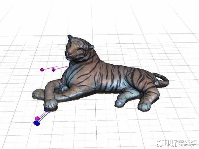 老虎 3D模型  图2