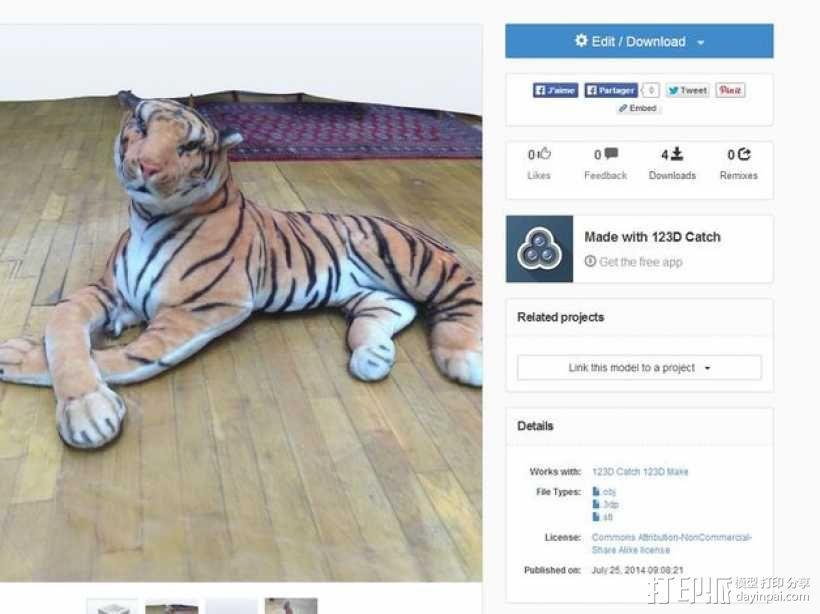 老虎 3D模型  图4