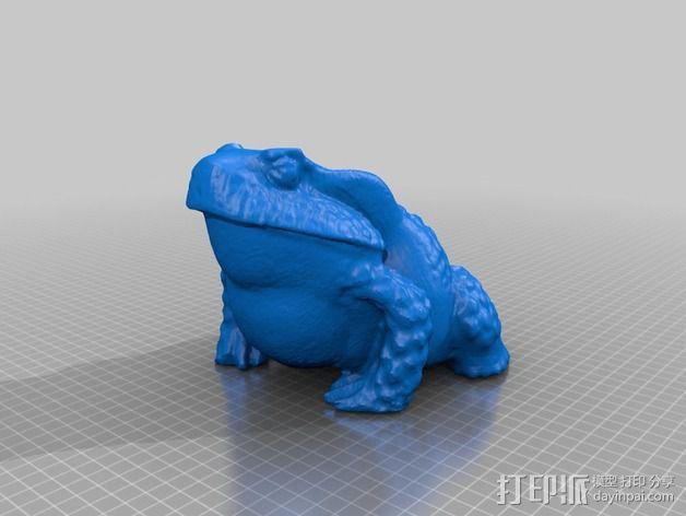 牛蛙 3D模型  图3