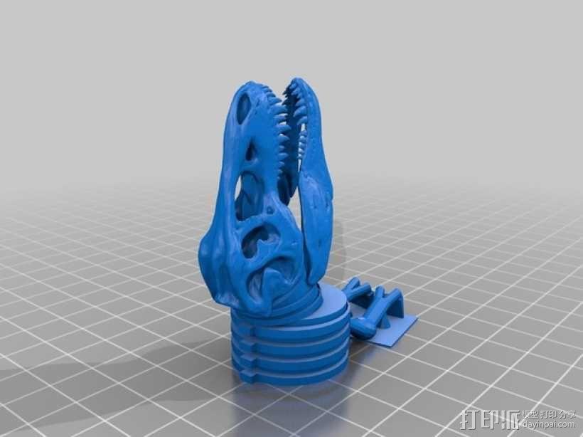 三角恐龙 霸王龙  3D模型  图5