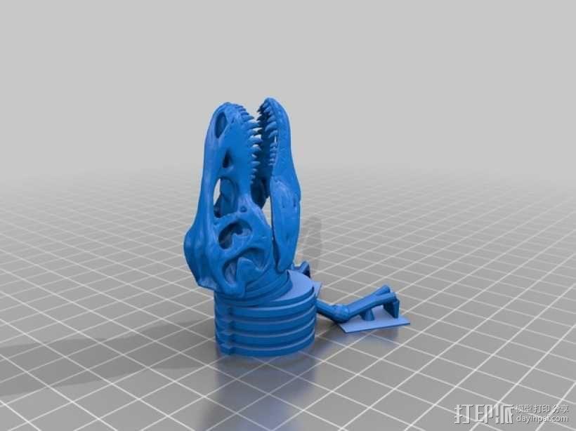 三角恐龙 霸王龙  3D模型  图7