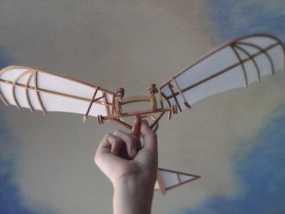 达芬奇扑翼机 3D模型