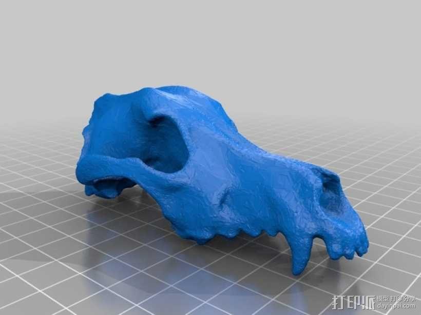 低面数狗头骨 3D模型  图1