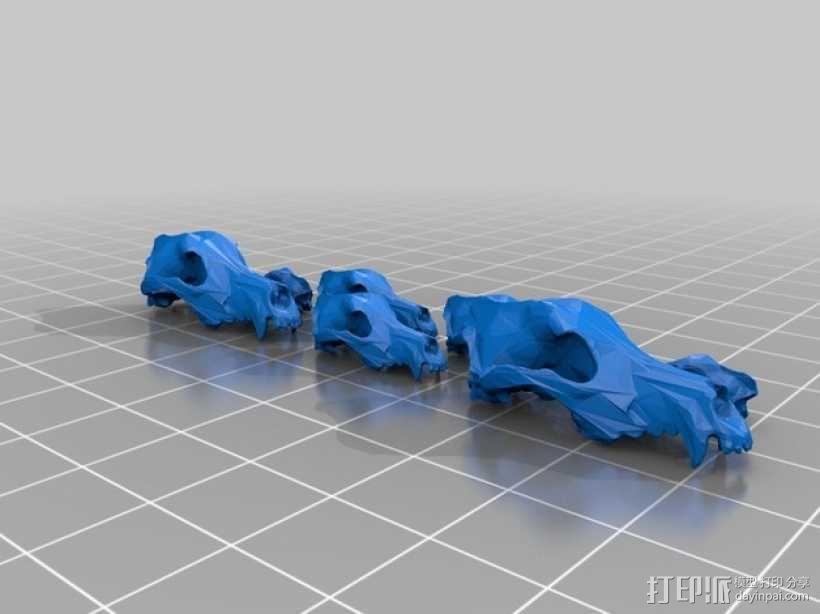 低面数狗头骨 3D模型  图2