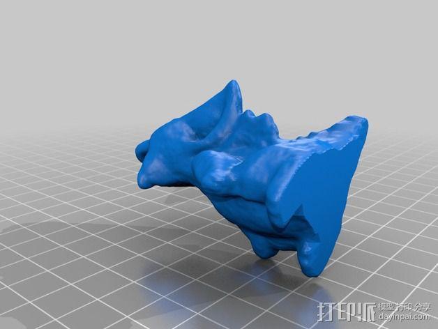 口袋龙模型 3D模型  图2