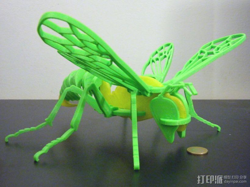 蜜蜂模型 3D模型  图1