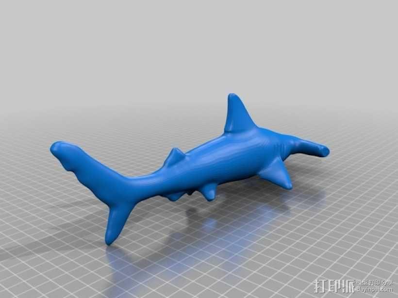海底总动员海底动物模型 3D模型  图7