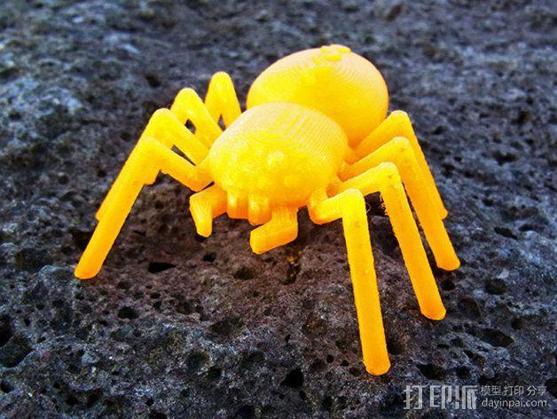 蜘蛛 3D模型  图7