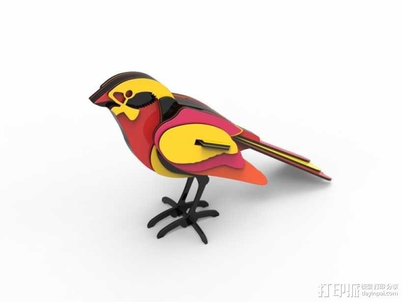 五彩小鸟 3D模型  图1