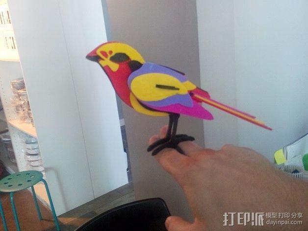 五彩小鸟 3D模型  图6