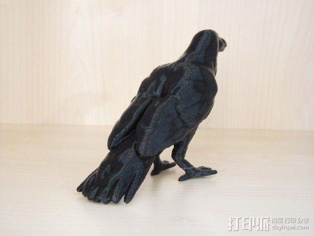 乌鸦 3D模型  图2