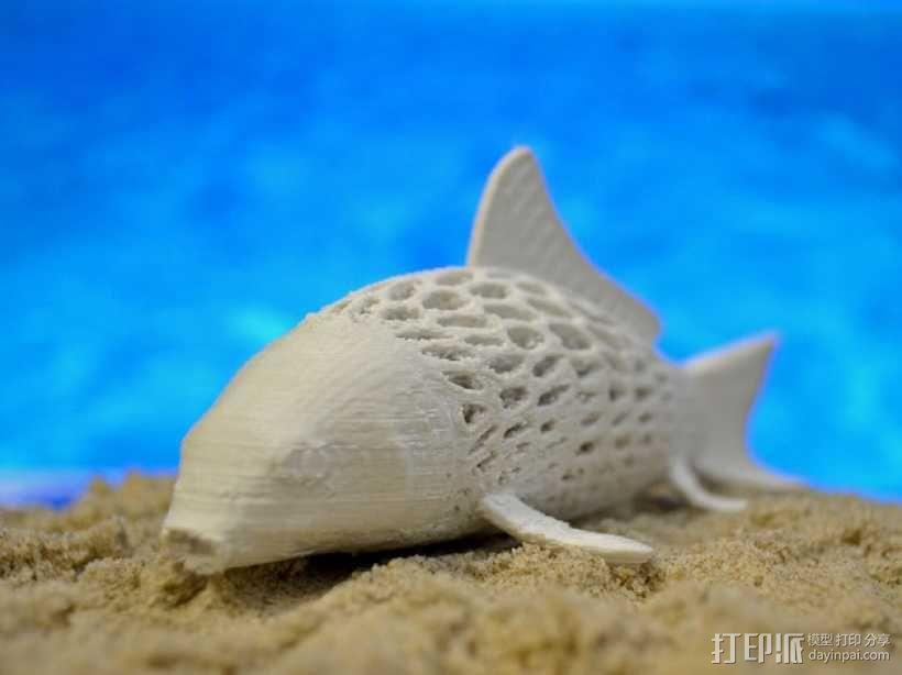鲤鱼 3D模型  图2