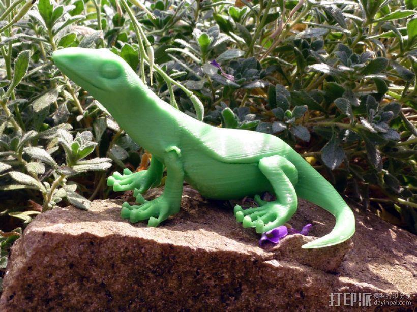 小蜥蜴 3D模型  图1