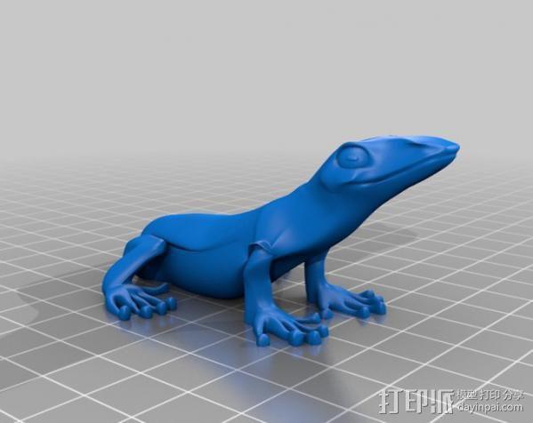 小蜥蜴 3D模型  图3