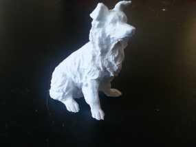 柯利牧羊犬 3D模型