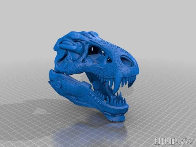 霸王龙头骨 3D模型  图8