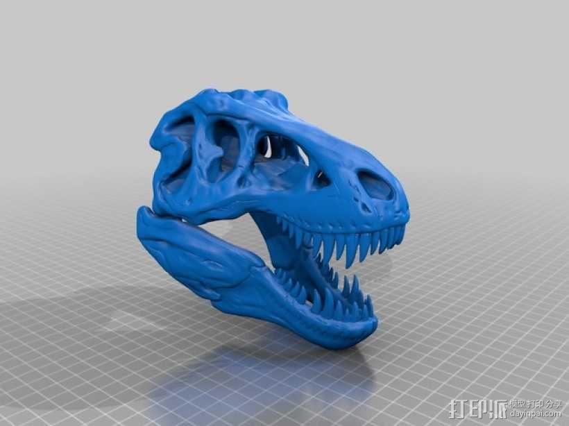 霸王龙头骨 3D模型  图10