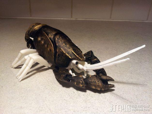 大龙虾 3D模型  图2