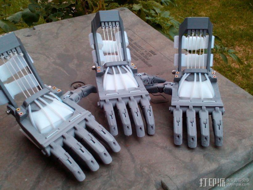 Talon Hand 轻型长手套 护手手套 3D模型  图1