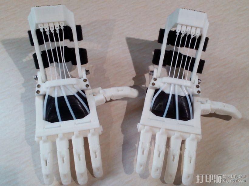 Talon Hand 轻型长手套 护手手套 3D模型  图3