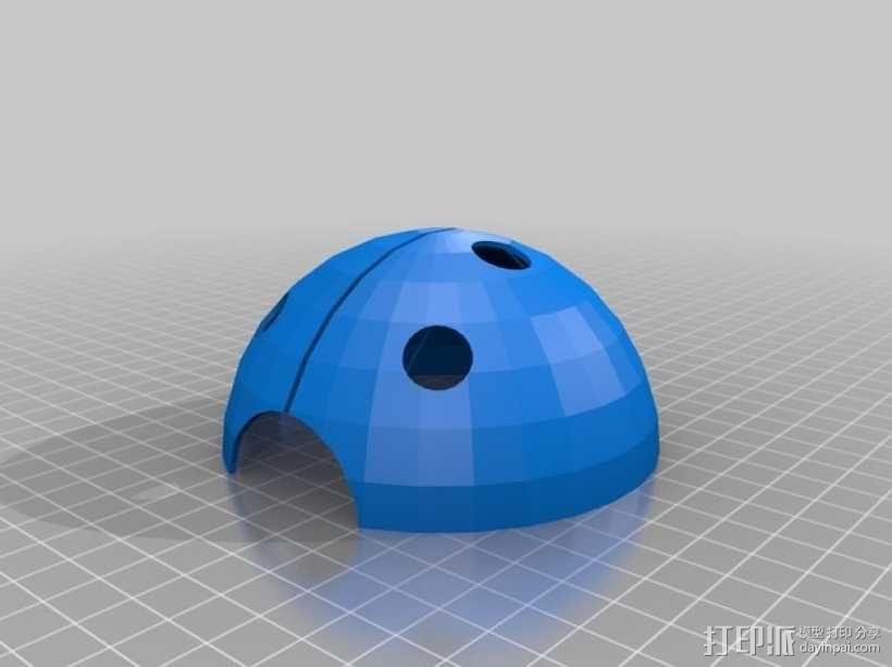 瓢虫  3D模型  图6