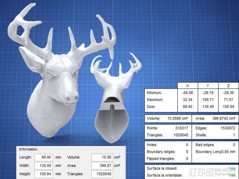 鹿头模型 3D模型  图1