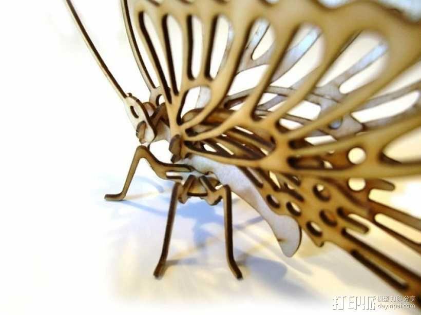 拼组蝴蝶 3D模型  图2