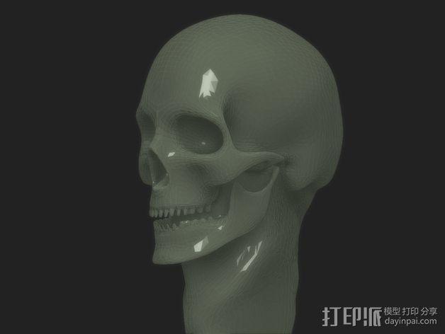骷髅头节杖 3D模型  图2