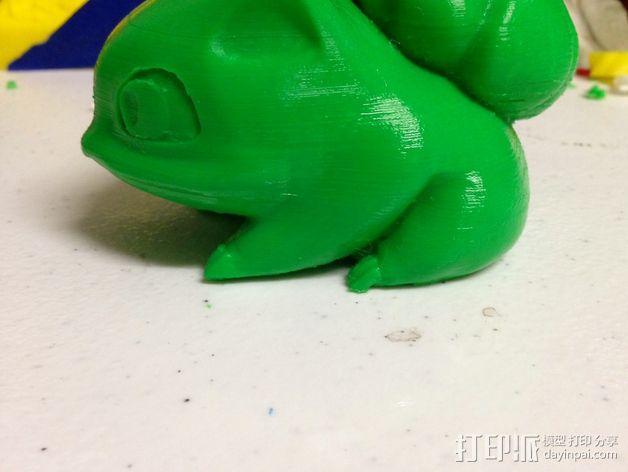 妙蛙种子 3D模型  图17