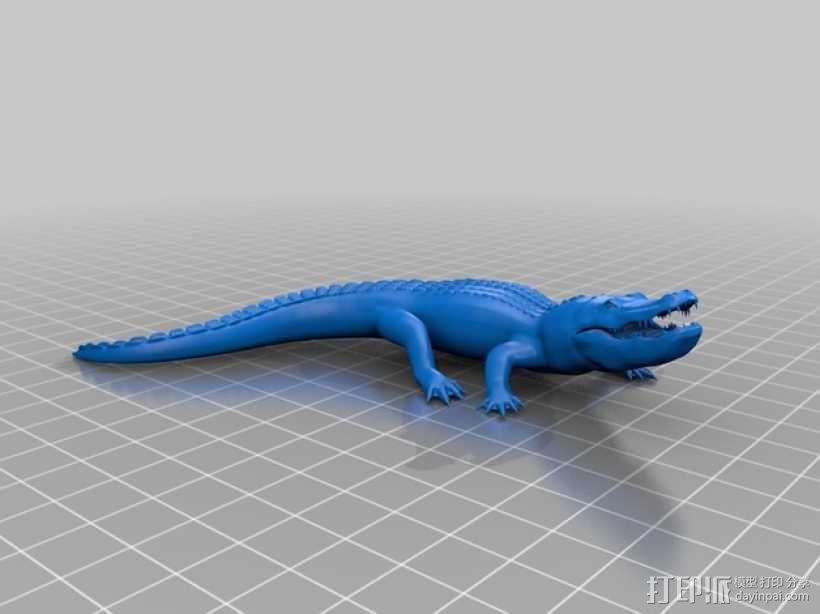 短吻鳄 3D模型  图1