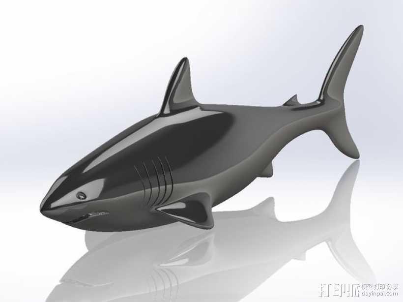 鲨鱼  3D模型  图1