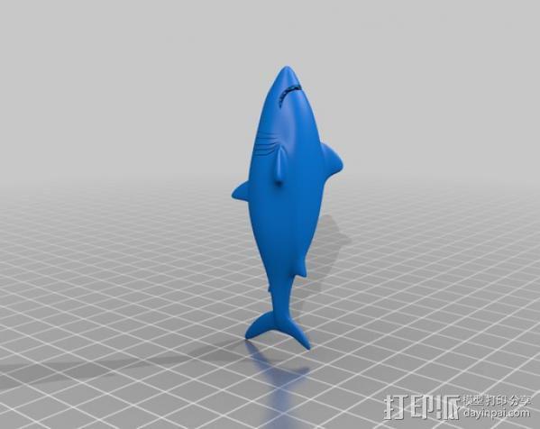 鲨鱼  3D模型  图2