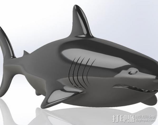 鲨鱼  3D模型  图3