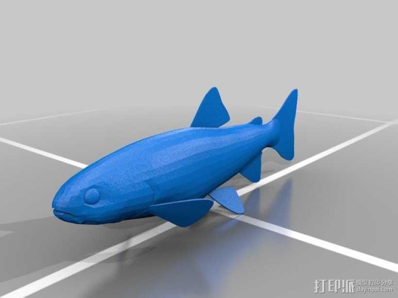 彩虹鲑鱼 3D模型  图2