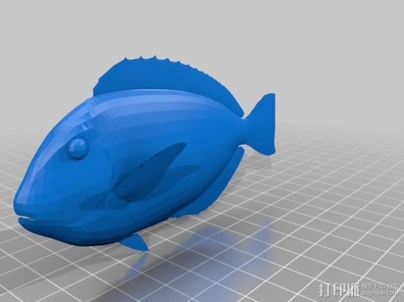 热带鱼  3D模型  图3