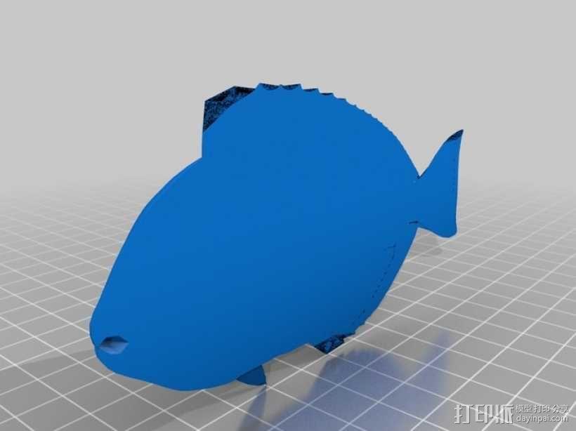 热带鱼  3D模型  图2