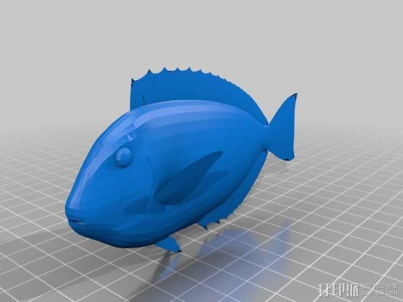 热带鱼  3D模型  图4