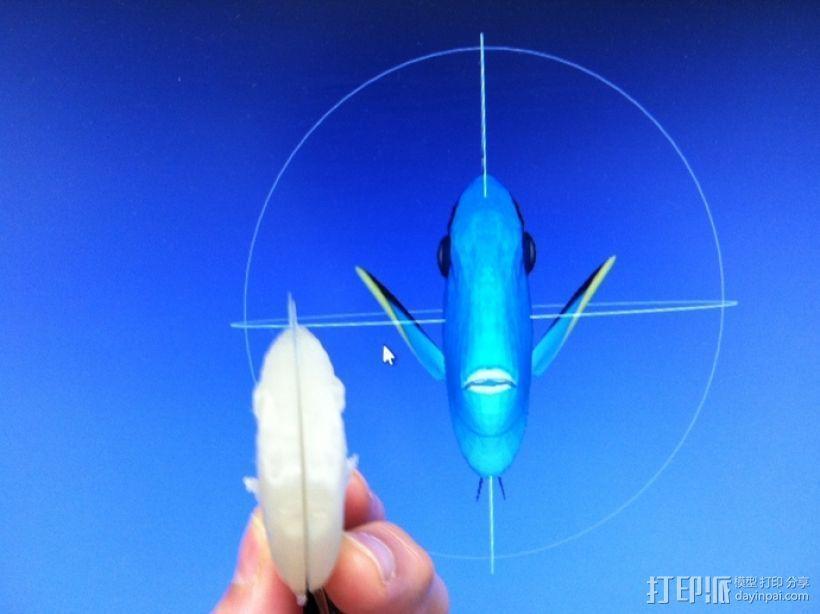 热带鱼  3D模型  图6