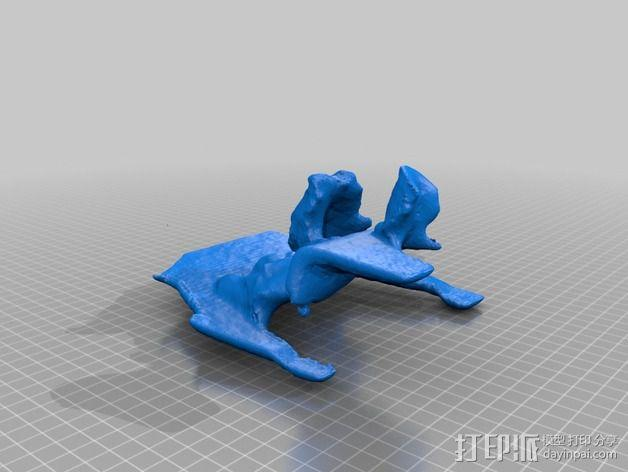 柯利犬  3D模型  图5