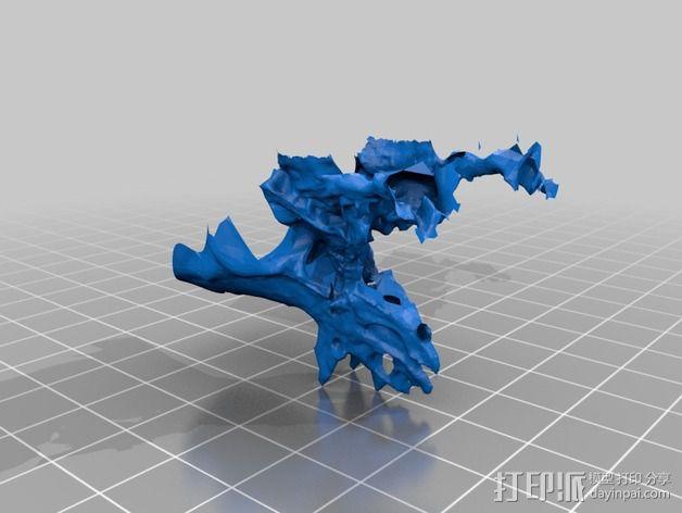 五角龙 3D模型  图2