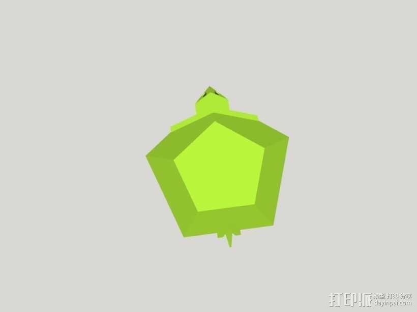 五边形海龟 3D模型  图4
