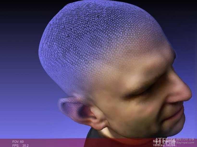 人头模型 3D模型  图1