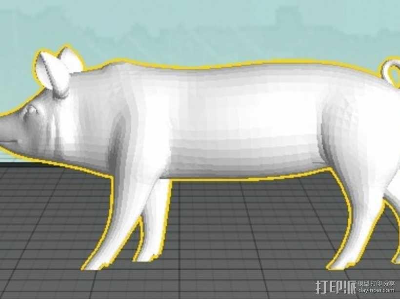 猪 3D模型  图4