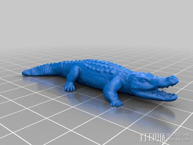 短吻鳄 3D模型  图2