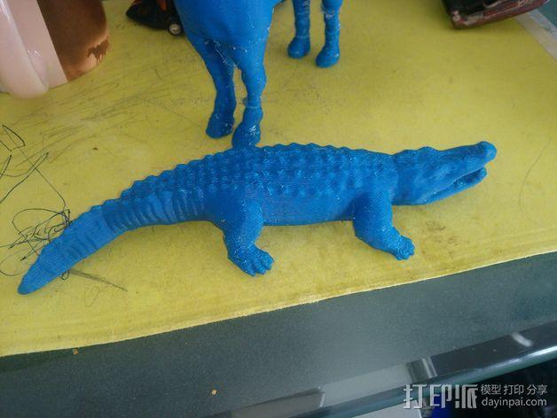 短吻鳄 3D模型  图4