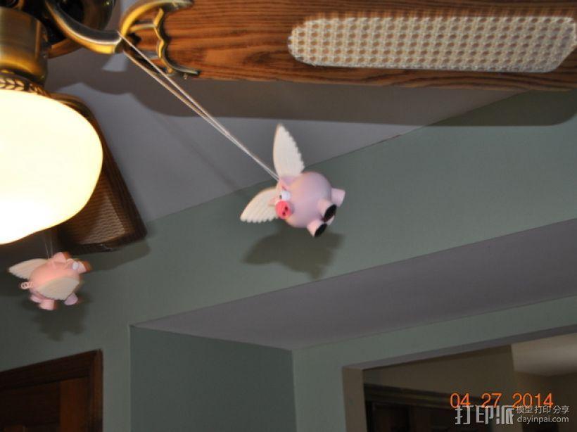 小飞猪 3D模型  图13