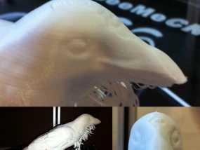 三眼乌鸦 3D模型